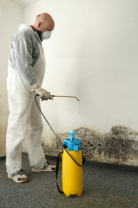 Removing mold - Air Quality Express